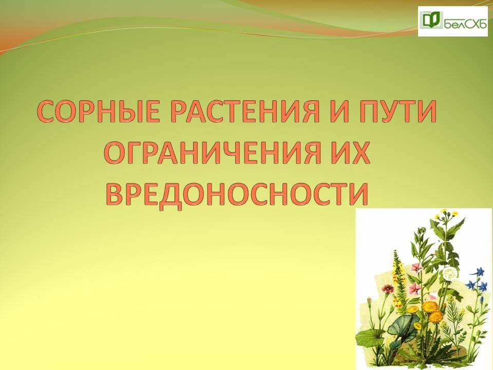 Сорные растения и пути ограничения их вредоносности