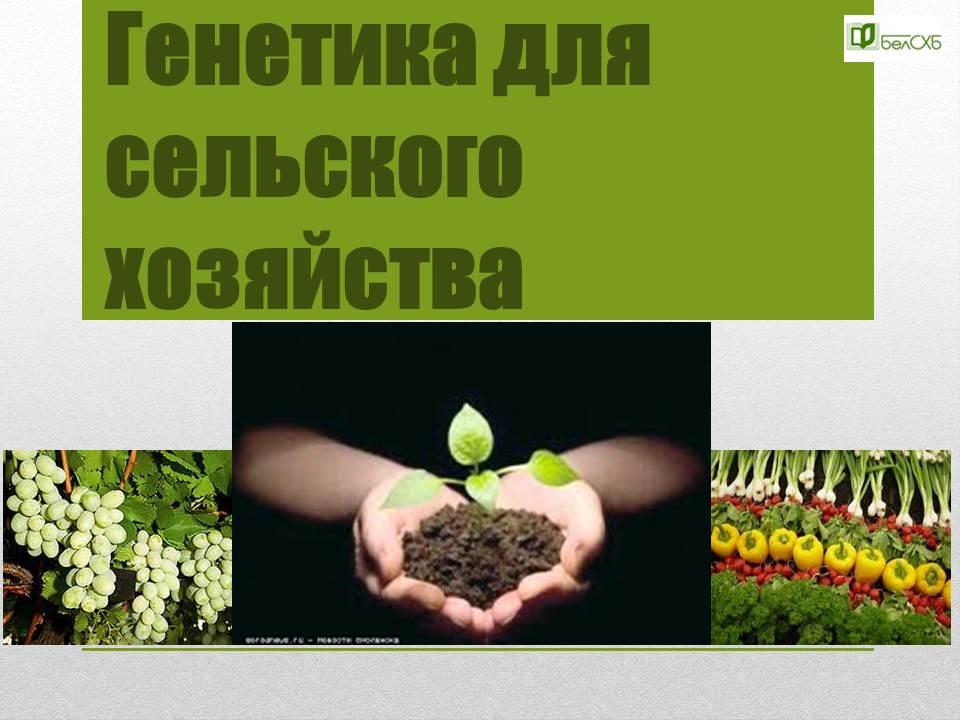 Гетика для сельского хозяйства