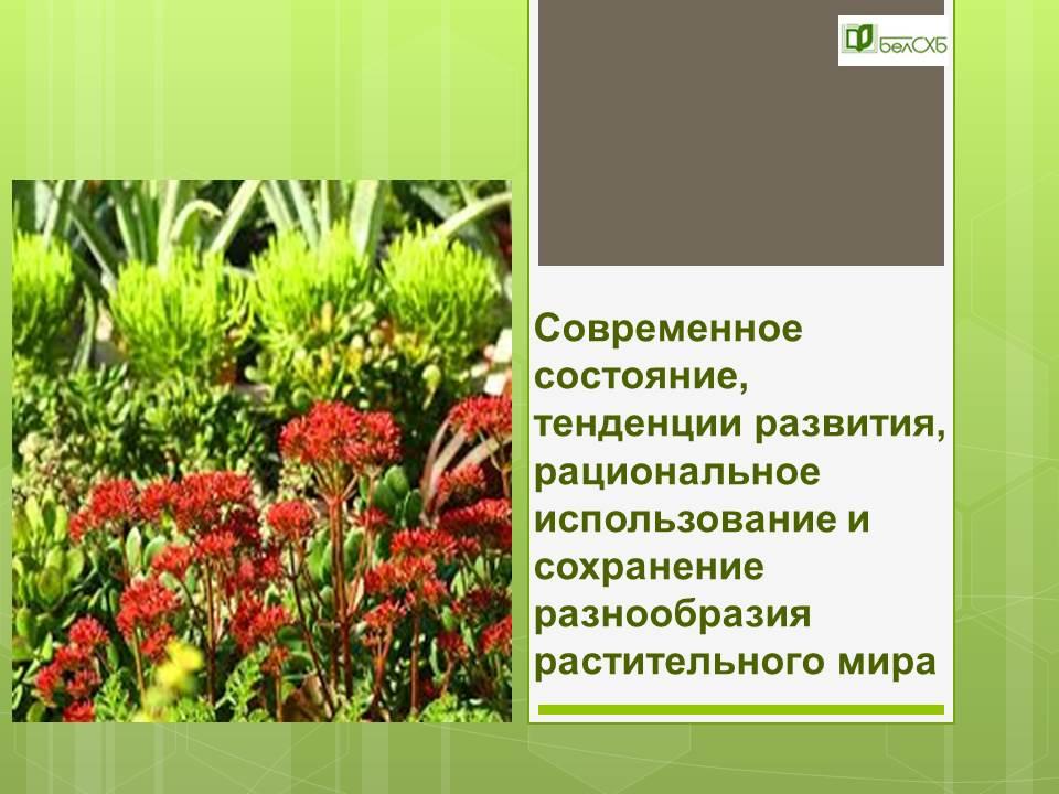 Современное состояние, тенденции развития, рациональное использование и сохранение биоразнообразия растительного мира