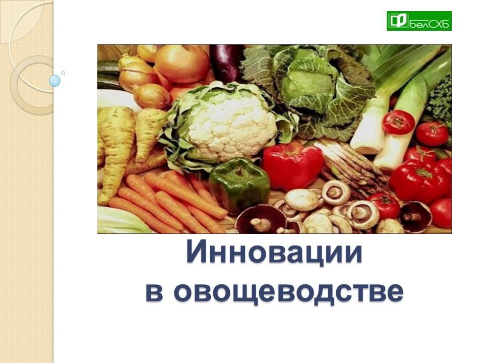 Инновации в овощеводстве